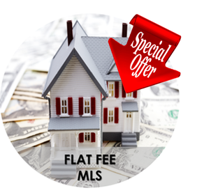 Buyers Vantage Discount Real Estate Services - Flat Fee MLS